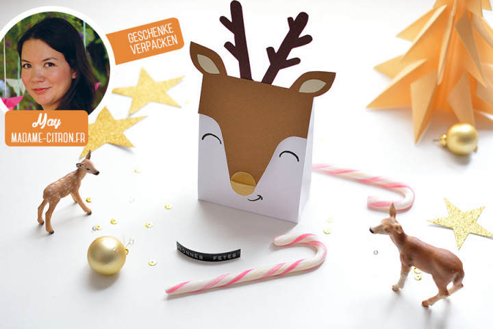 header-gift-wrapping--reindeer
