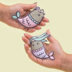 Weihnachtsgeschenke für die freundin pusheen handwärmer