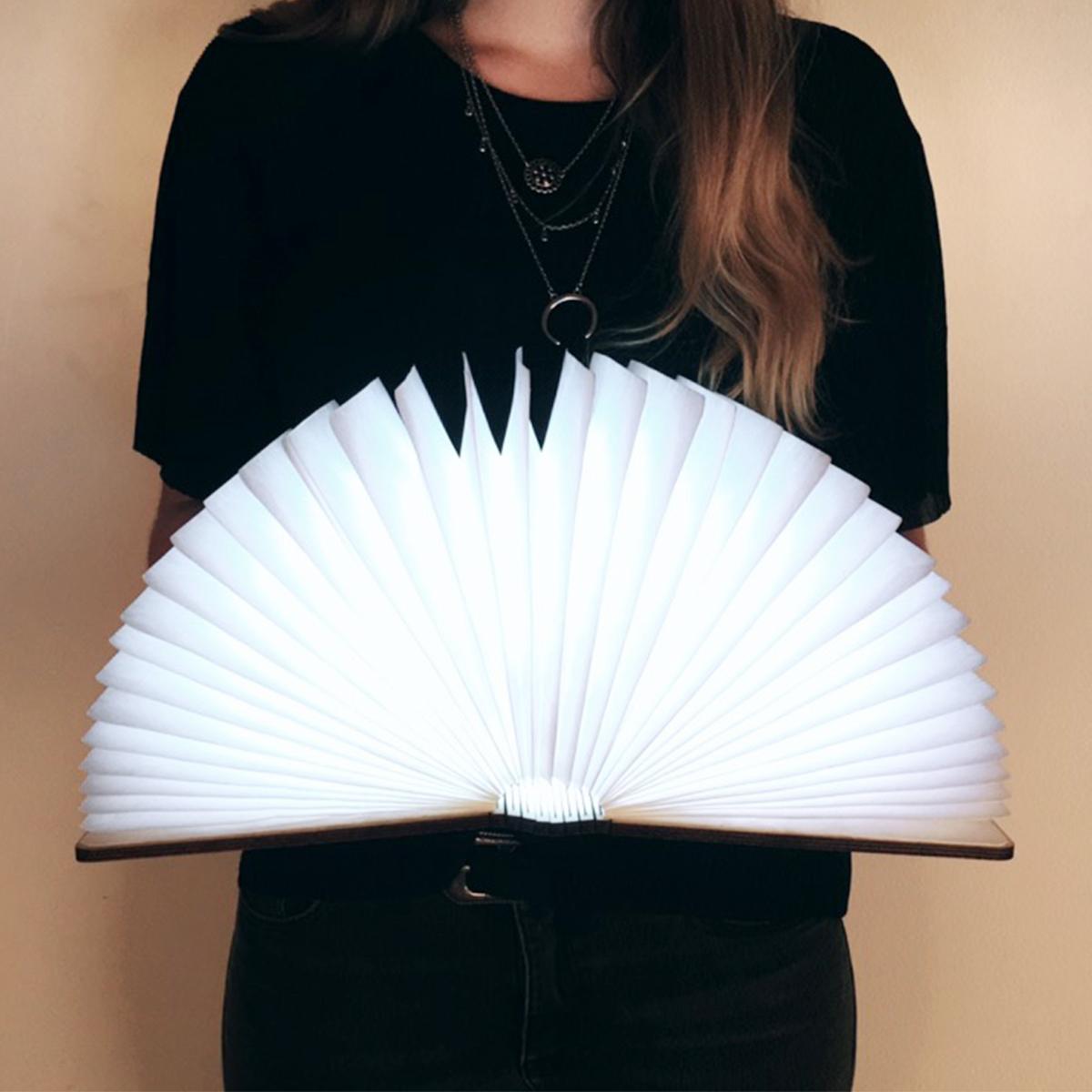 Vorschaubild von Buch-Leuchte mit Holzeinband
