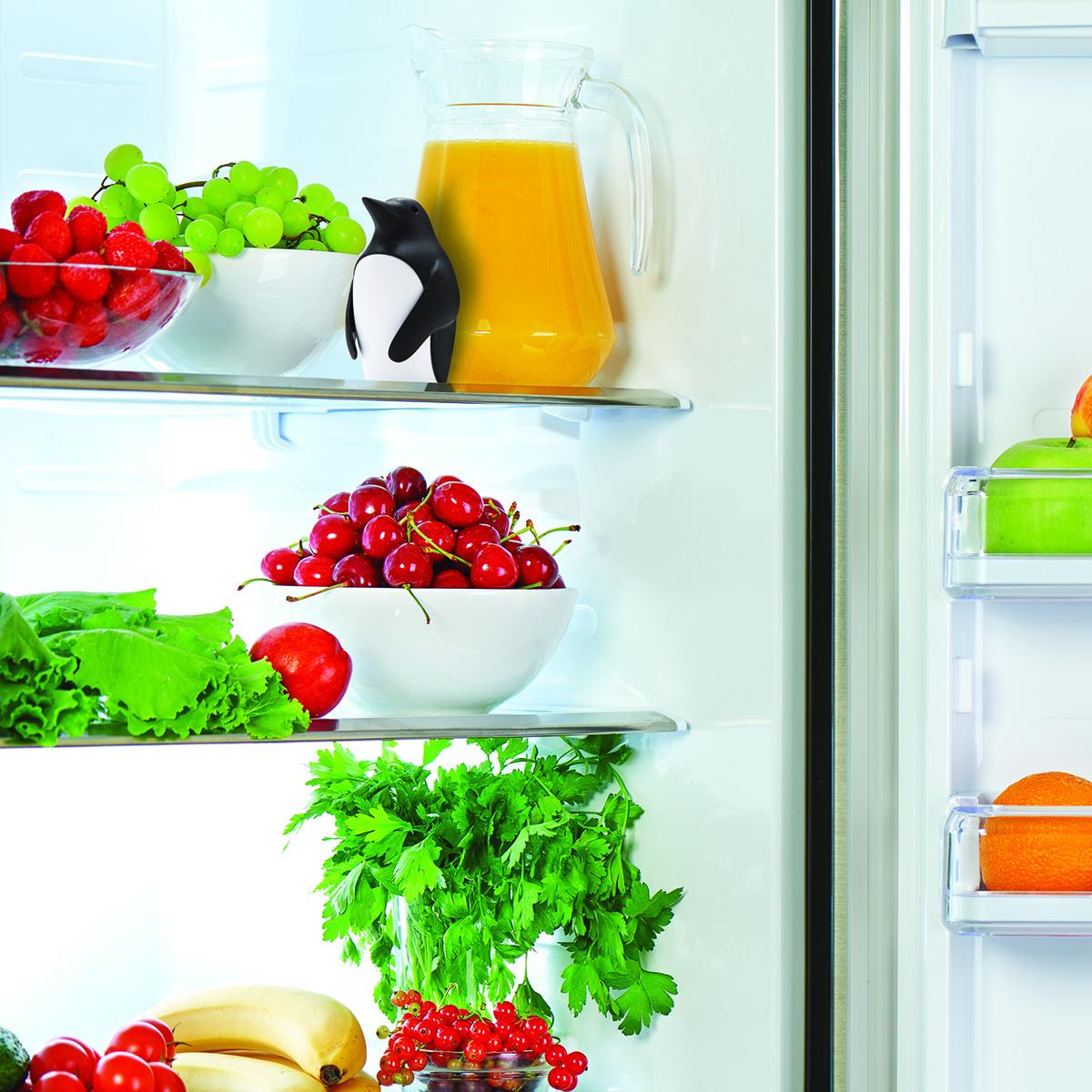 Chill Bill Pinguin Geruchsneutralisierer im Kühlschrank