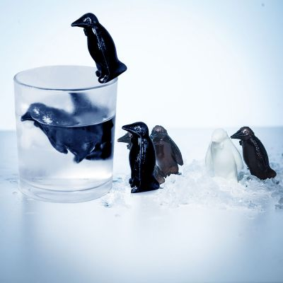 Pinguin Coolers