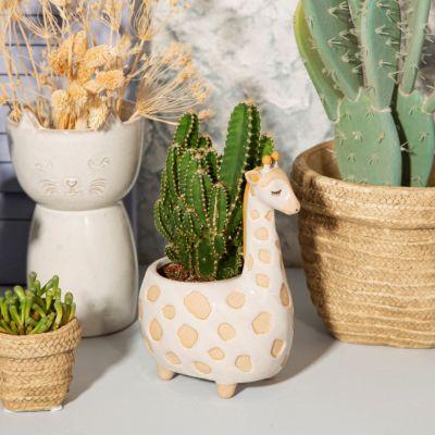 Gina Giraffe Blumentopf