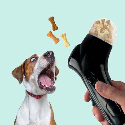 Leckerli-Schleuder für Hunde