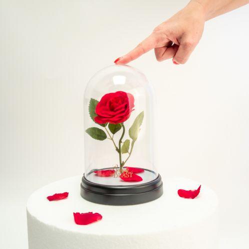 Die Schöne und das Biest: Verzauberte Rosen Leuchte