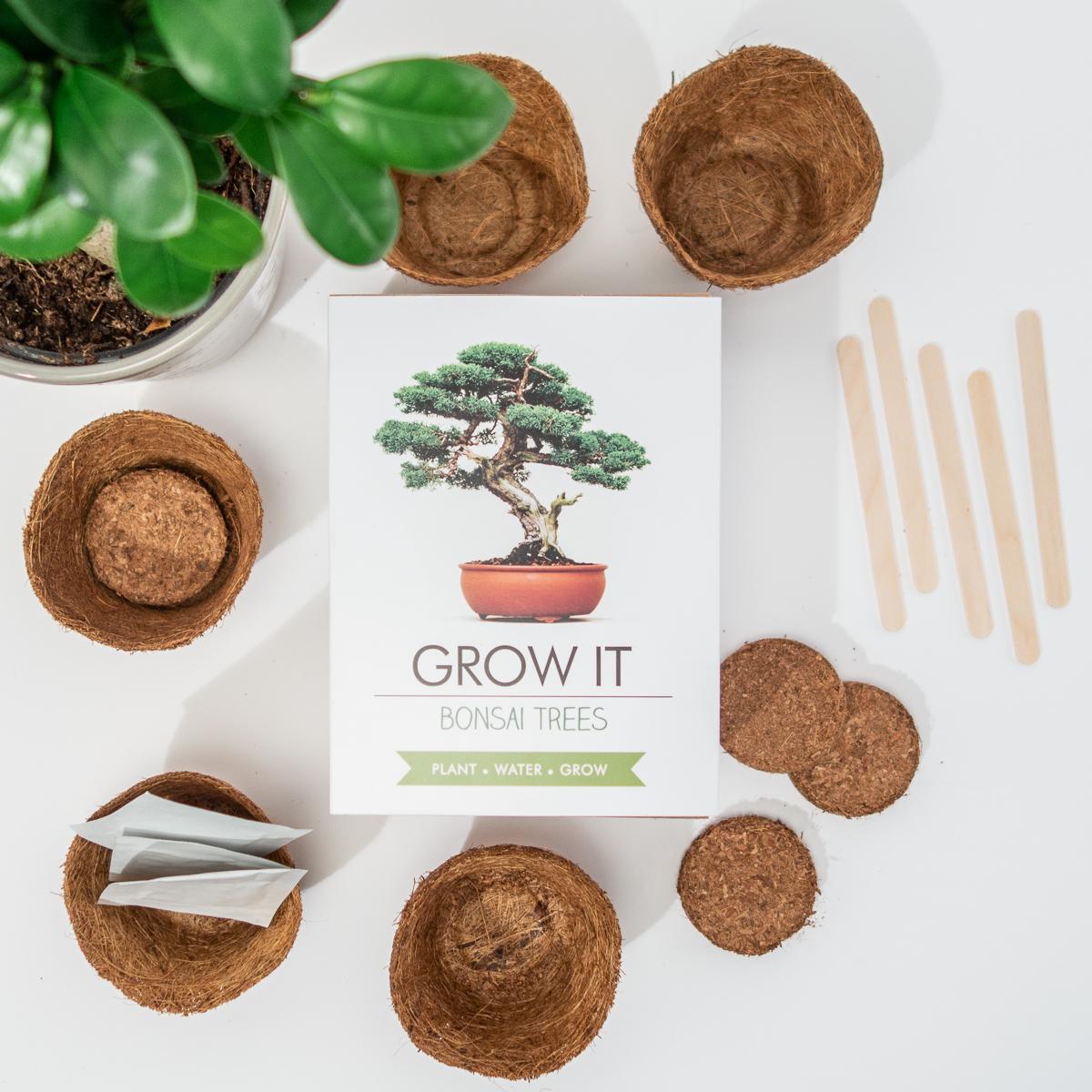 Grow It Bonsai-Bäume