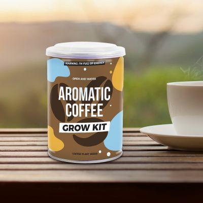 Kaffeepflanze aus der Dose
