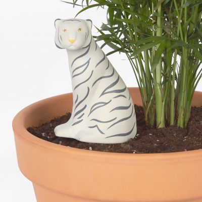 Tiger Bewässerung für Zimmerpflanzen