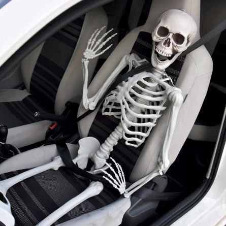 Skelett in Lebensgröße