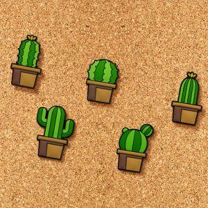 Kaktus Pinn-Nadeln