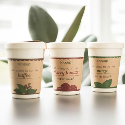 Küche & Grill - ecocup - Pflanzen im Kaffeebecher