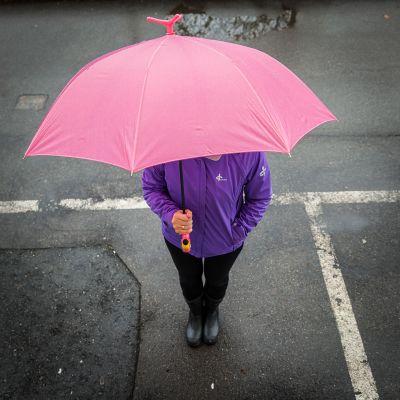 Fasching & Karneval - Flamingo Regenschirm
