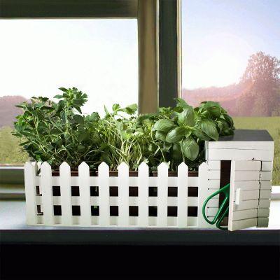 Ostergeschenke - Mini Kräutergarten für drinnen