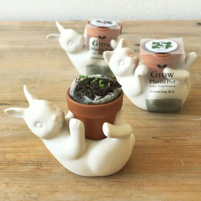 Essen & Trinken - Blumentopf-Freunde Katze & Hase