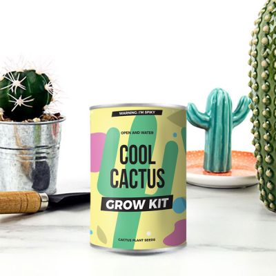 Kaktus aus der Dose