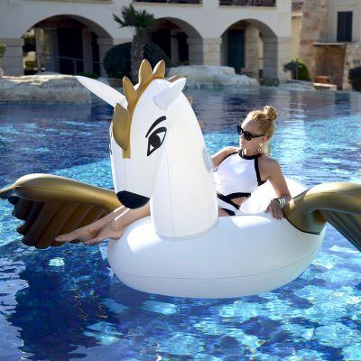 Draußen - Aufblasbarer Pegasus