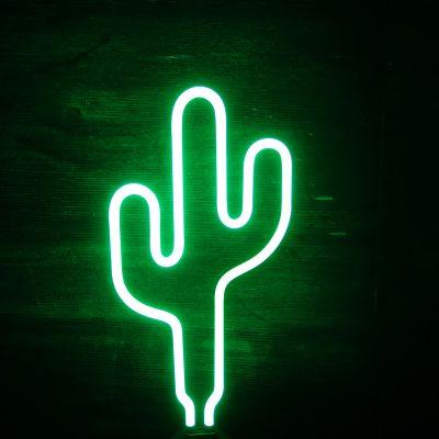 Kaktus Neon Leuchte